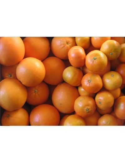 Mixed: 5 Kg mandarins and 10 Kg juice oranges