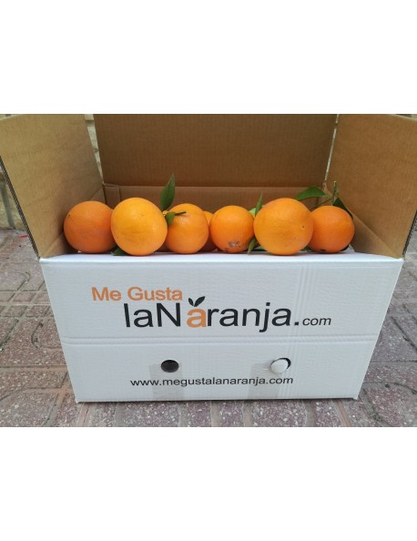 13 Kg Naranjas sin clasificar variedad Lane Late