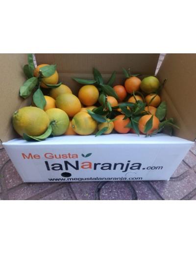Mixta: 10Kg Naranjas de zumo ácida y 5Kg de mandarina Marisol