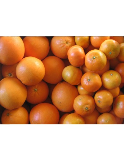 Mixed: 5 Kg mandarins and 5 Kg juice acid oranges