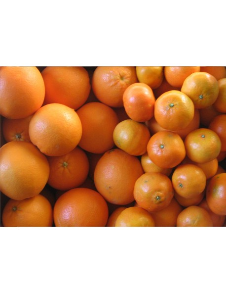 Caja de 10 Kg, 5Kg de Naranjas de zumo y 5Kg de mandarinas