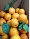 Naranjas zumo: Caja 15 Kg